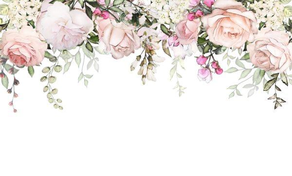 3д белые цветы