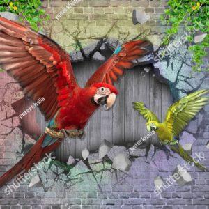 3д попугаи