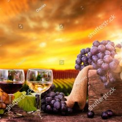 stock-photo-red-and-white-wine-in-glasses-with-fresh-grapes-on-the-wooden-table-1181694703